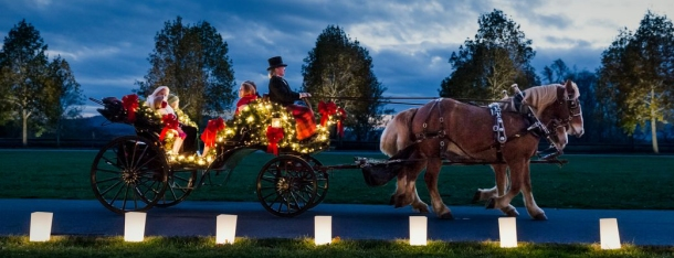 Lavish horse carriage ride